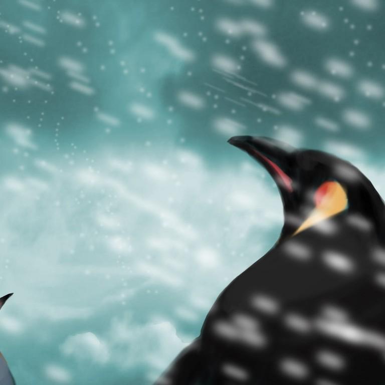 pinguine-fein2