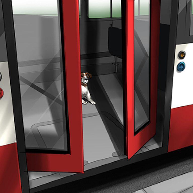 Bus_Hund_1