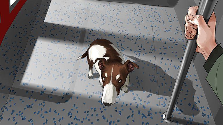 Bus_Hund_2